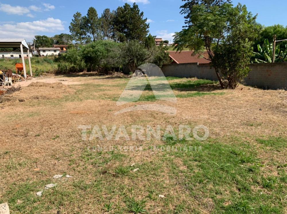 Comprar Casa / Lazer em Ponta Grossa R$ 350.000,00 - Foto 3