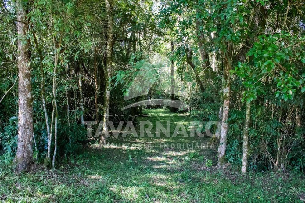 Comprar Terreno / Condomínio em Ponta Grossa R$ 119.006,60 - Foto 3