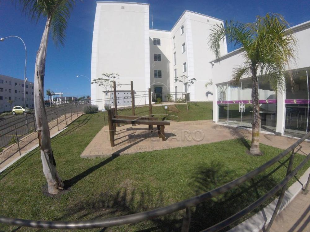 Comprar Apartamento / Padrão em Ponta Grossa R$ 120.000,00 - Foto 12