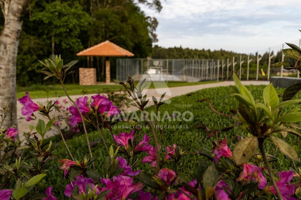 Comprar Terreno / Condomínio em Ponta Grossa R$ 119.006,60 - Foto 19