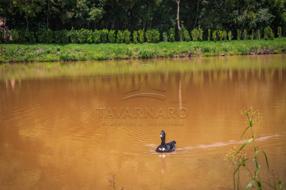 Comprar Terreno / Condomínio em Ponta Grossa R$ 119.006,60 - Foto 13