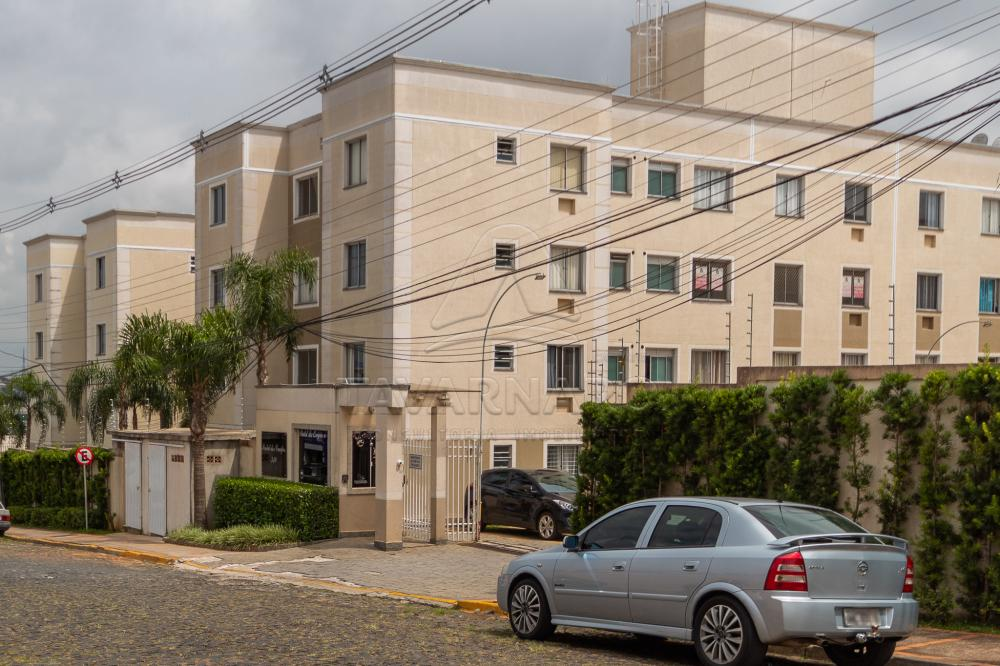 Alugar Apartamento / Padrão em Ponta Grossa R$ 550,00 - Foto 14