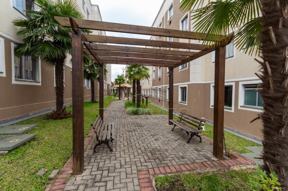 Alugar Apartamento / Padrão em Ponta Grossa R$ 550,00 - Foto 18
