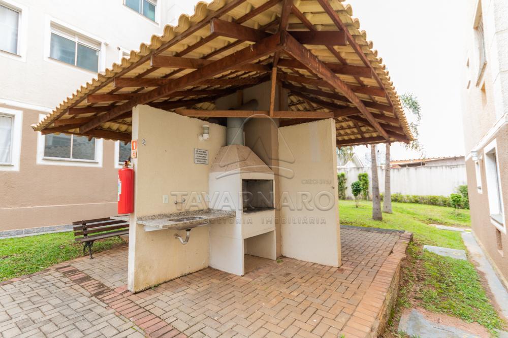 Alugar Apartamento / Padrão em Ponta Grossa R$ 550,00 - Foto 21
