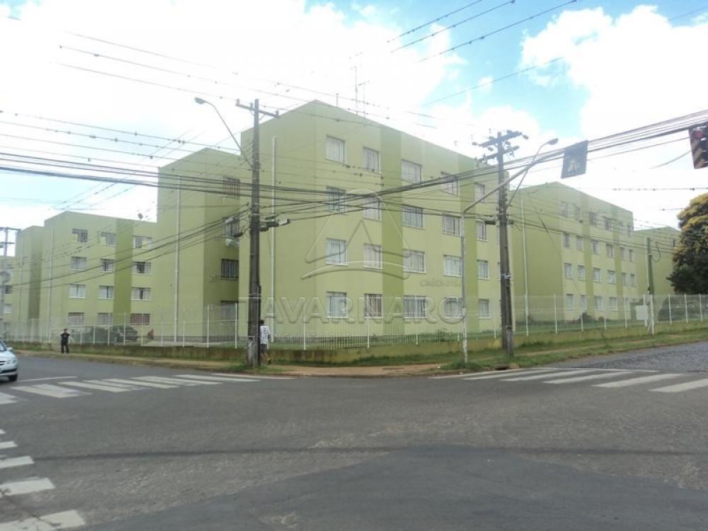 Alugar Apartamento / Padrão em Ponta Grossa apenas R$ 500,00 - Foto 10