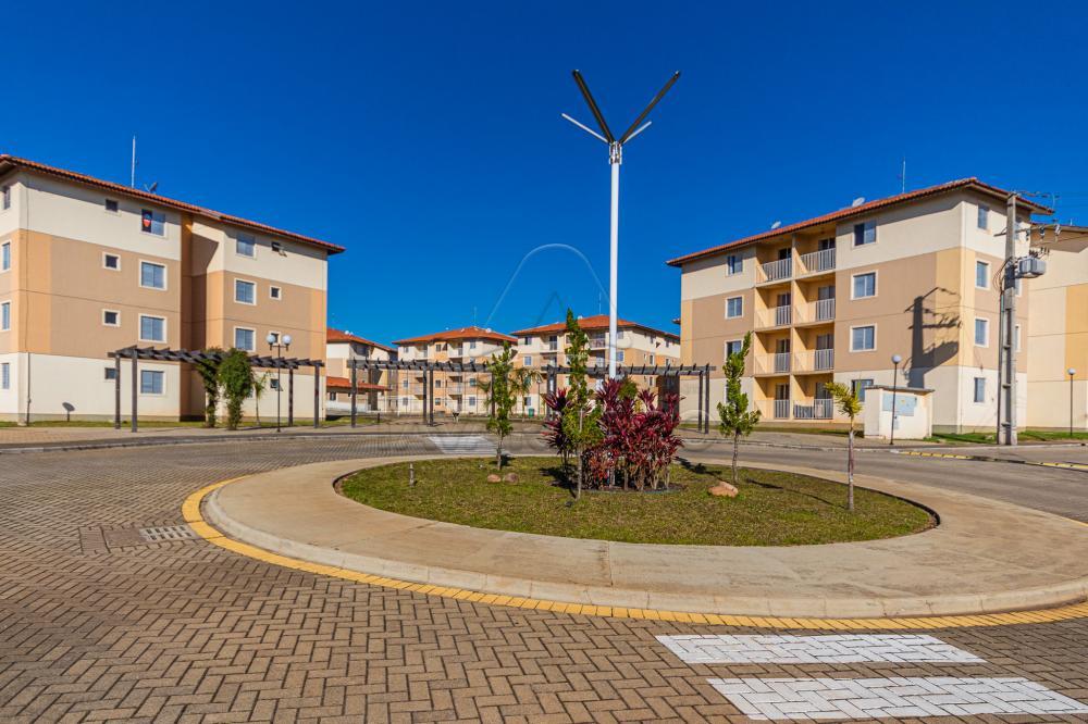 Alugar Apartamento / Padrão em Ponta Grossa apenas R$ 700,00 - Foto 21