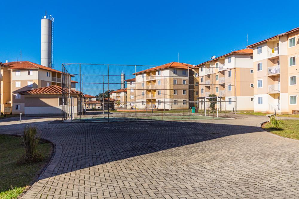 Alugar Apartamento / Padrão em Ponta Grossa apenas R$ 700,00 - Foto 23