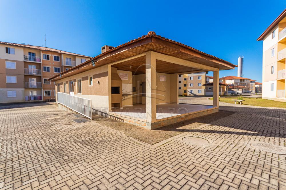 Alugar Apartamento / Padrão em Ponta Grossa apenas R$ 700,00 - Foto 25