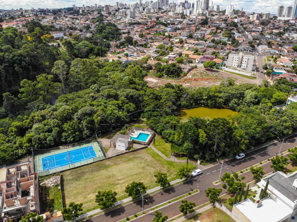 Comprar Terreno / Condomínio em Ponta Grossa apenas R$ 278.000,00 - Foto 4