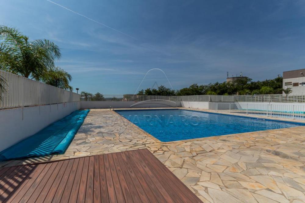 Alugar Casa / Condomínio em Ponta Grossa R$ 480,69 - Foto 18