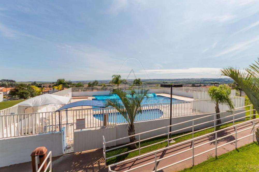 Alugar Casa / Condomínio em Ponta Grossa R$ 480,69 - Foto 16