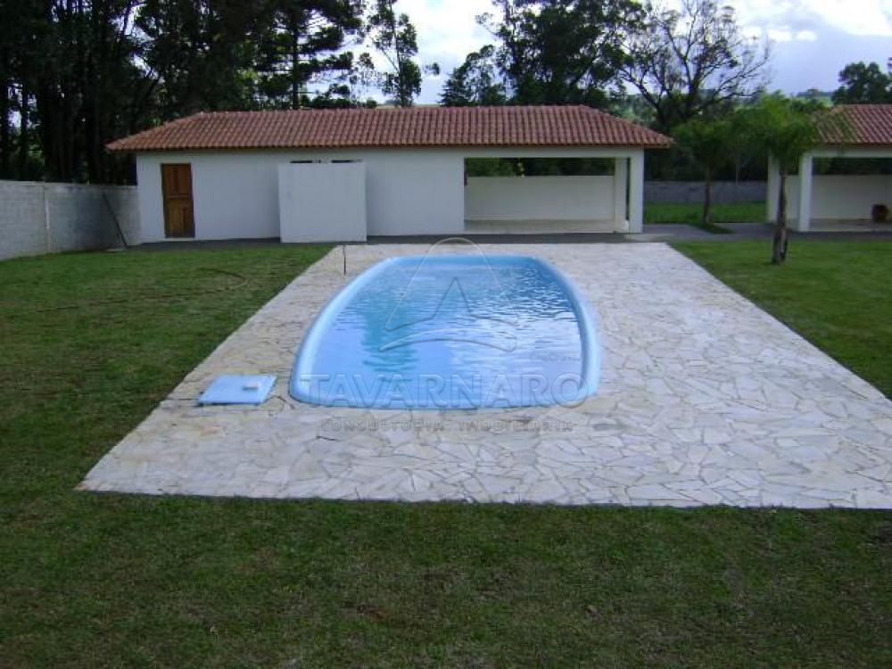 Alugar Apartamento / Kitinete em Ponta Grossa apenas R$ 400,00 - Foto 13