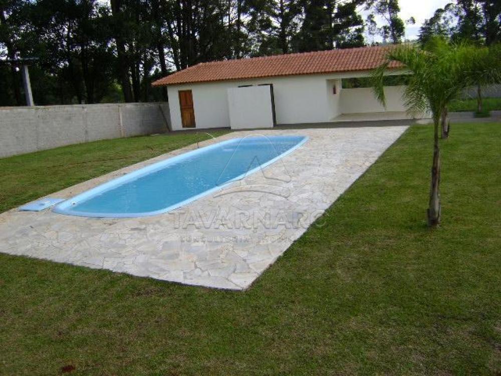 Alugar Apartamento / Kitinete em Ponta Grossa apenas R$ 400,00 - Foto 14