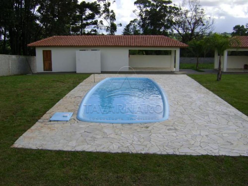 Alugar Apartamento / Kitinete em Ponta Grossa apenas R$ 400,00 - Foto 15