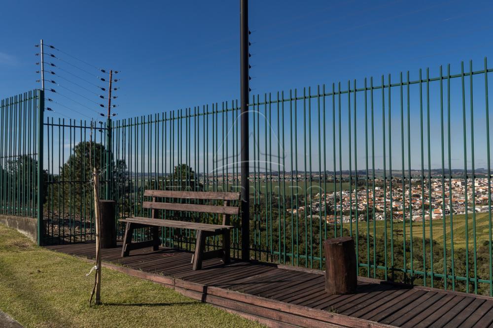 Comprar Terreno / Condomínio em Ponta Grossa R$ 290.000,00 - Foto 18