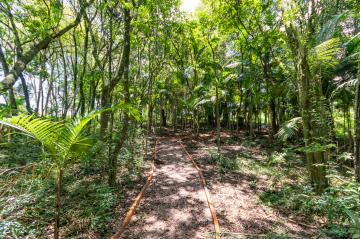 Comprar Terreno / Condomínio em Ponta Grossa R$ 119.006,60 - Foto 22