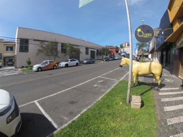 Comercial / Barracão em Ponta Grossa , Comprar por R$4.000.000,00