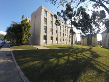 Alugar Apartamento / Padrão em Ponta Grossa. apenas R$ 350,00