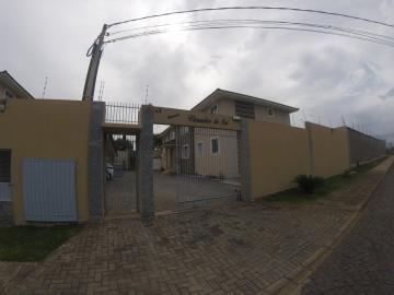 Apartamento / Padrão em Ponta Grossa Alugar por R$790,00