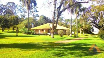 Ponta Grossa Jardim Carvalho Area Venda R$5.500.000,00  Area do terreno 53200.00m2