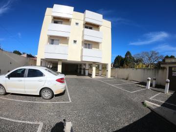 Alugar Apartamento / Padrão em Ponta Grossa R$ 926,00 - Foto 4