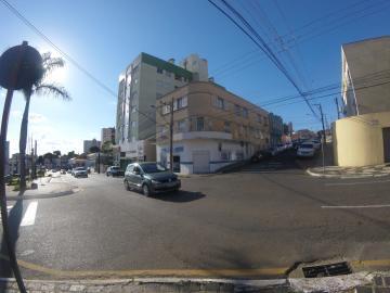 Apartamento / Padrão em Ponta Grossa Alugar por R$650,00