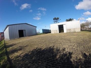 Ponta Grossa Nova Russia Comercial Locacao R$ 25.000,00 Area construida 1000.00m2