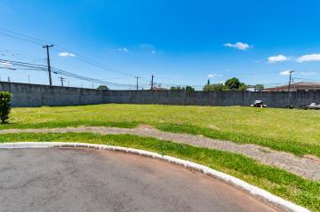 Alugar Terreno / Condomínio em Ponta Grossa. apenas R$ 650.801,23