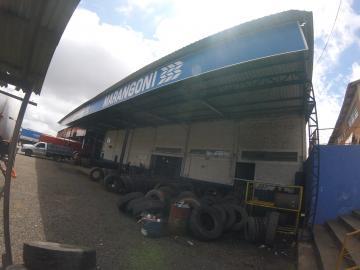 Alugar Comercial / Barracão em Ponta Grossa R$ 9.500,00 - Foto 2