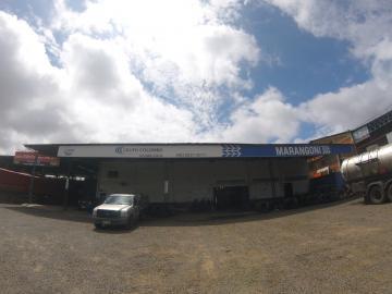 Alugar Comercial / Barracão em Ponta Grossa R$ 9.500,00 - Foto 3