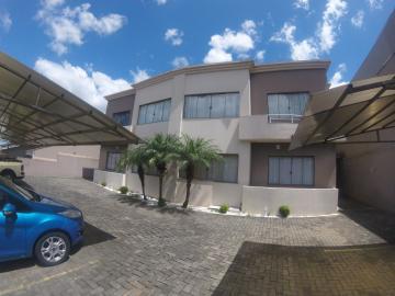 Alugar Apartamento / Padrão em Ponta Grossa. apenas R$ 900,00