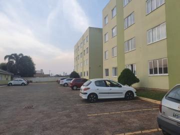 Alugar Apartamento / Padrão em Ponta Grossa. apenas R$ 500,00
