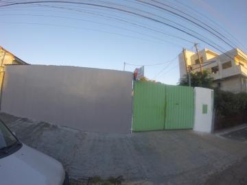 Comercial / Terreno em Ponta Grossa Alugar por R$1.400,00