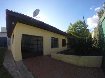 Apartamento / Comercial / Residencial em Ponta Grossa Alugar por R$1.500,00
