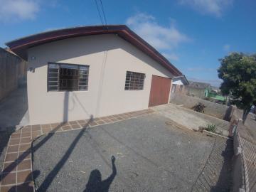 Alugar Casa / Padrão em Ponta Grossa. apenas R$ 780,00