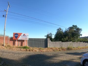 Alugar Comercial / Terreno em Ponta Grossa.