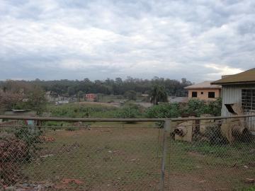 Comercial / Terreno em Ponta Grossa Alugar por R$1,00