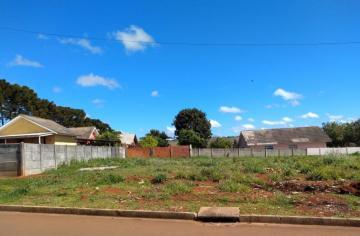 Terreno / Padrão em Ponta Grossa , Comprar por R$120.000,00