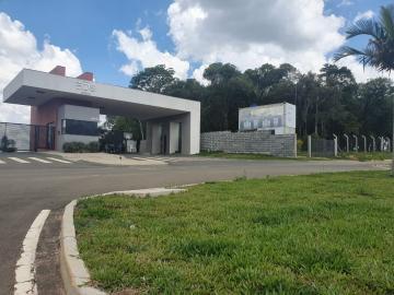 Alugar Terreno / Condomínio em Ponta Grossa. apenas R$ 95.000,00