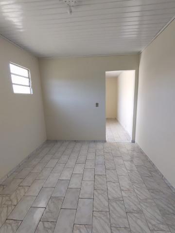 Apartamento / Kitinete em Ponta Grossa Alugar por R$350,00