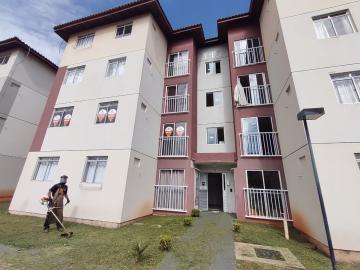 Apartamento / Padrão em Ponta Grossa Alugar por R$400,00