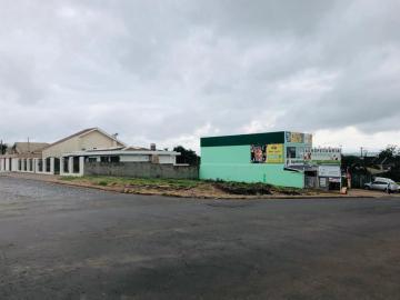 Comercial / Terreno em Ponta Grossa