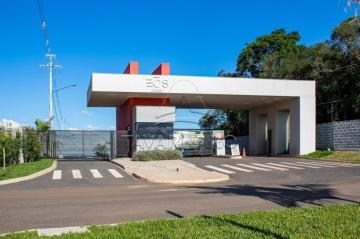 Alugar Terreno / Condomínio em Ponta Grossa. apenas R$ 115.010,00