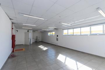 Alugar Comercial / Loja em Ponta Grossa R$ 6.000,00 - Foto 14