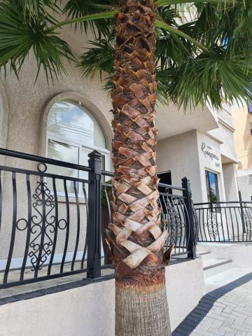 Comprar Apartamento / Padrão em Ponta Grossa R$ 1.100.000,00 - Foto 15