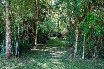 Comprar Terreno / Condomínio em Ponta Grossa R$ 115.010,00 - Foto 3